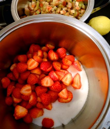Vorbereitung der Erdbeer- und der Rhabarbermarmelade